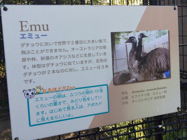 td_emu_k