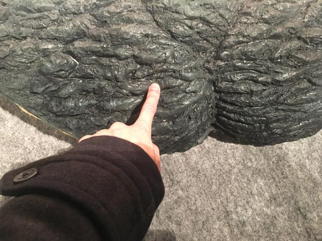 特撮のDNA-ゴジラの表皮を触ってみる
